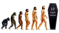 Is Human Evolution Dead? – One of 4 Ways Humans Could Evolve in the future